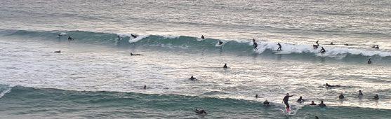 Portada comunidad surf