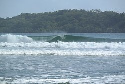carenero surf forecast